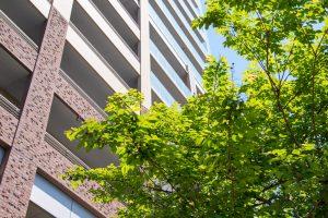 不動産投資初心者がマンション投資で成功するための7つのステップ