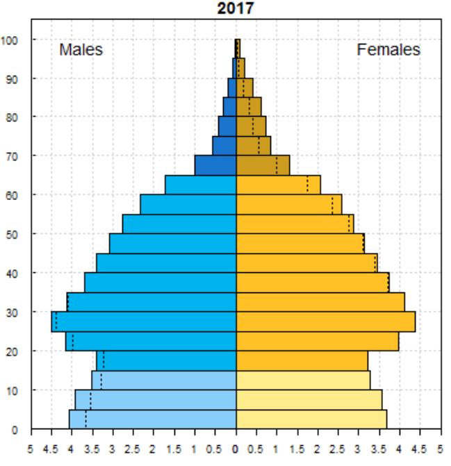 ベトナムの人口ピラミッド